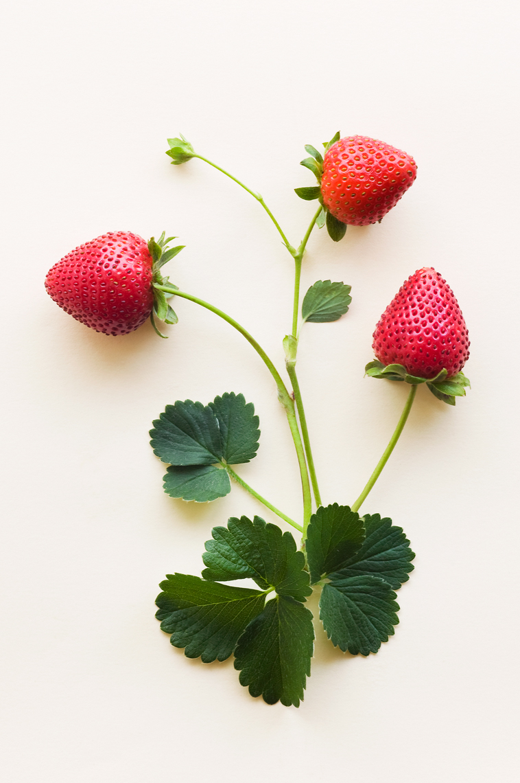01_Red_Strawberries_021